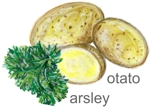 parsley / potato - Petersilie / Kartoffeln